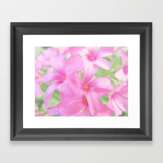 Coral Pink Petals Framed Art Print