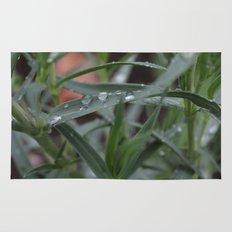 Rain Drops Rug