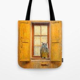 Old Shutter In France Tote Bag