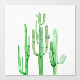 Three Amigos Cacti Green Canvas Print