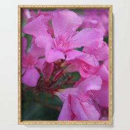 Pink Oleander Flower  Serving Tray