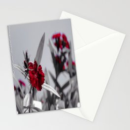 Red Petals by Igh Kihl Media/Piffington Kushfield Photography Stationery Cards