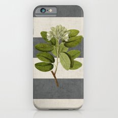 botanical stripes 5 -gray iPhone 6 Slim Case