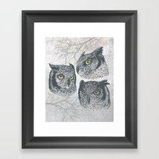 Three Owls Framed Art Print
