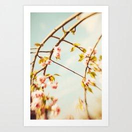 Cut through the Garden V Art Print