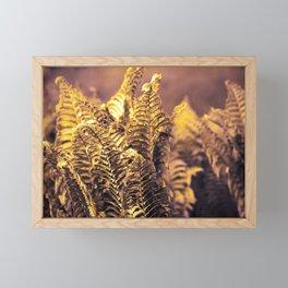 Fern 14 Framed Mini Art Print