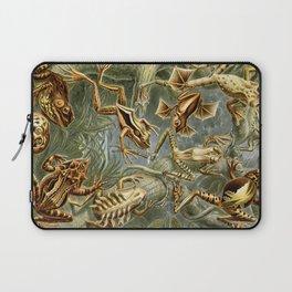 Ernst Haeckel Batrachia 1904 Poster Laptop Sleeve