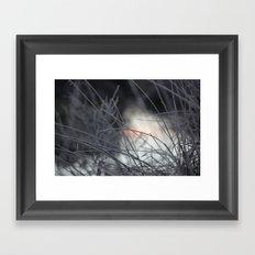 25 Degrees  Framed Art Print