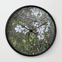 Almond tree branches and flowers Wall Clock
