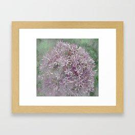 Textured Violet Alliun Framed Art Print