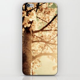Rays of sunshine, brings you hope & joy for your everyday!! iPhone Skin