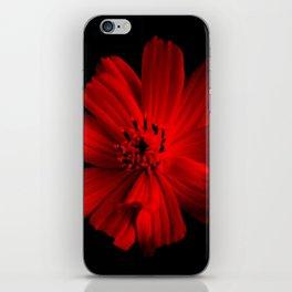 RED - 100418/2 iPhone Skin