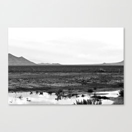 Salt Flat Road Canvas Print
