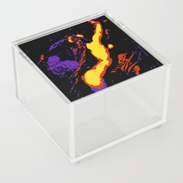 Braid Acrylic Box