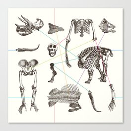 Puzzle bones Canvas Print