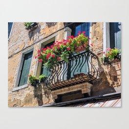 Geraniums in Italy Canvas Print