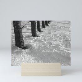 Row of Poplar Trees in Drifted Snow Mini Art Print