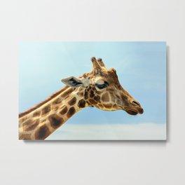 Jeffery the Giraffe Metal Print