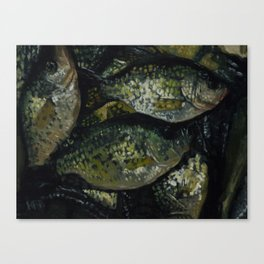 A Crappie Day Canvas Print