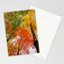 Colorful autumn forest Stationery Cards