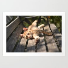 Stretching Art Print