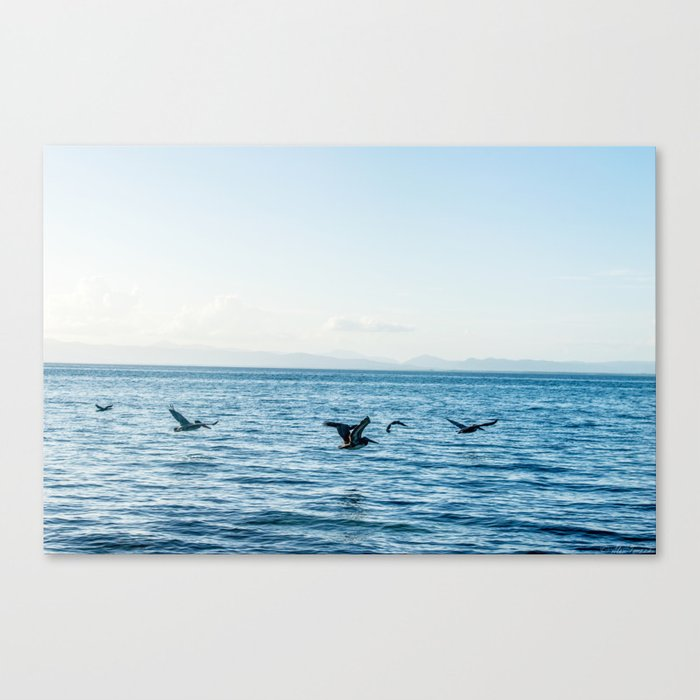Flying Flock Canvas Print
