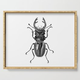 Beetle 17 Serving Tray