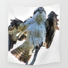 Osprey Posing Wall Tapestry