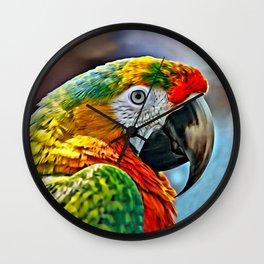 COLORFUL MACAW BIRD Wall Clock