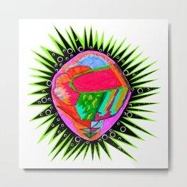 Porcupine Eye Metal Print