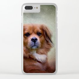 Rudi in wintertime Clear iPhone Case
