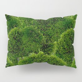 Moss - Green Luscious Mossy Texture - Full on Natural Moss Mounds- Earthy Greens -Turning Moss Green Pillow Sham