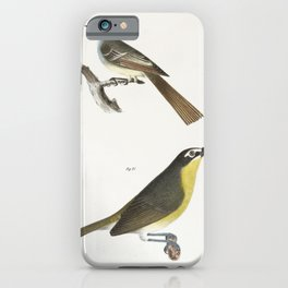 70 The Great-crested Kingbird (Tyrannus crinitus) 71 The Yellow-brested Chat (Icteria viridis)  from iPhone Case