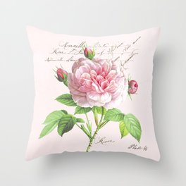 Paris Rose Throw Pillow