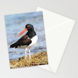 Nautical Poser Stationery Cards