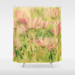 Vintage Spring Coral Pink Daisy Flowers Shower Curtain