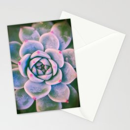 Rose Succulent Stationery Cards