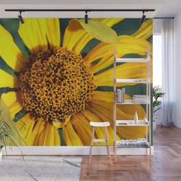Sunflower in the Horicon Marsh Prairie Wall Mural