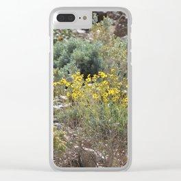 Brittle Bush At Coachella Wildlife Preserve 5 Clear iPhone Case