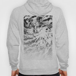B&W Abstract Spiral Hoody