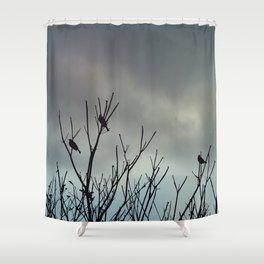 Under Grey Skies Shower Curtain