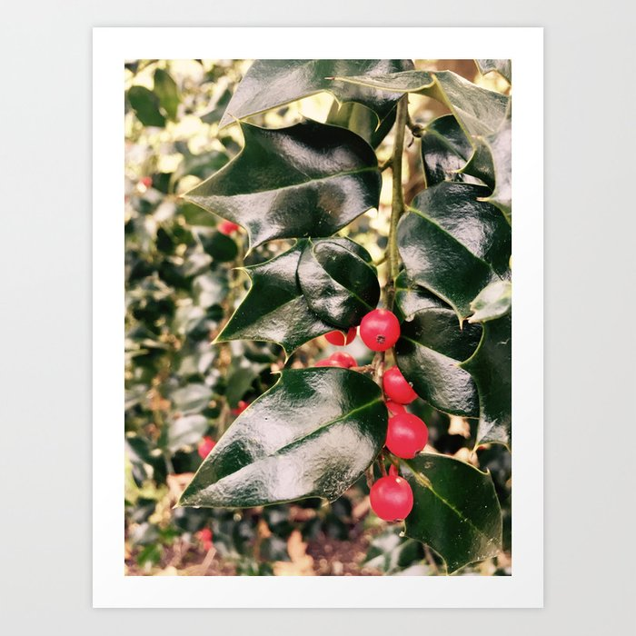Christmas Mistletoe Art Print By Izzy292 Society6