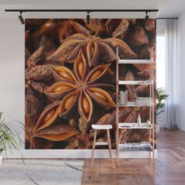 Star Anise Wall Mural