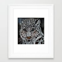 snow leopard Framed Art Prints featuring Snow Leopard by ira gora