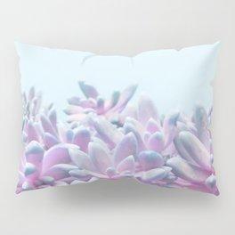 Sweet Succulents Pillow Sham