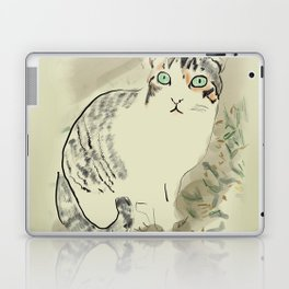A cute kitten named Kiwi Laptop & iPad Skin