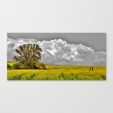 Before the rainstorm - photography Canvas Print