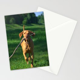 Vizsla Stationery Cards