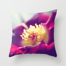 Red Rose Vintage  Throw Pillow