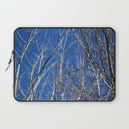 Bare Tree Branches  Laptop Sleeve
